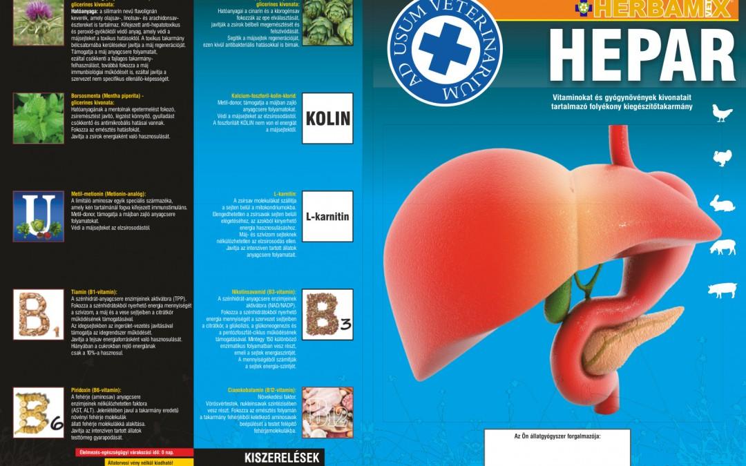 Herbamix Hepar